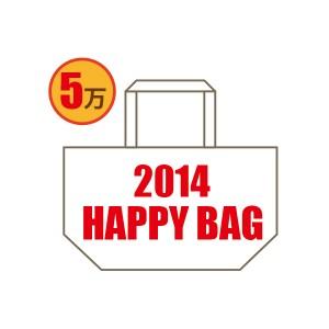 RUKA 2014 福袋 HAPPY BAG 5万円バッグ